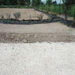 Giardino Terapeutico: il giardino delle farfalle